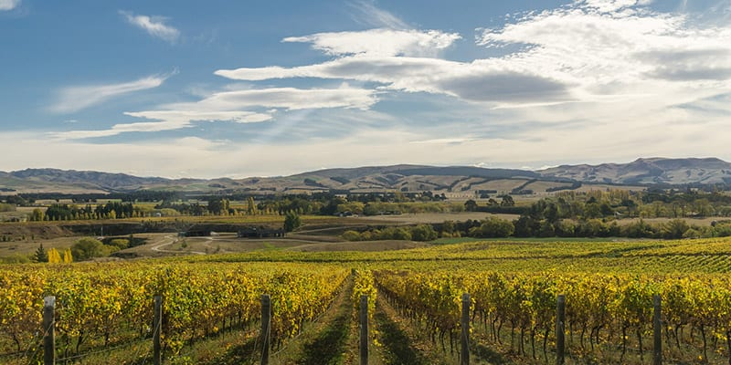 Waipara Valley