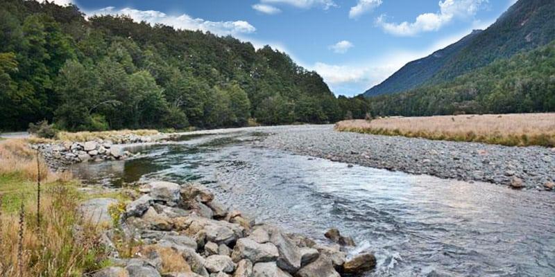 Mackay Creek Campsite