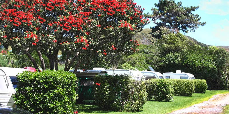 Paekakariki Holiday Park