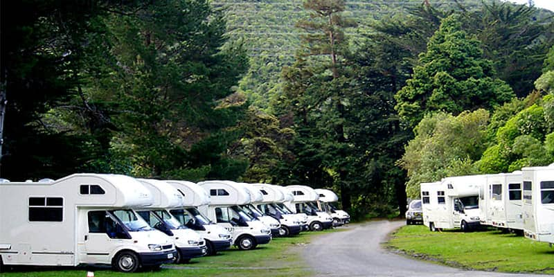 Wellington's Kiwi Holiday Park